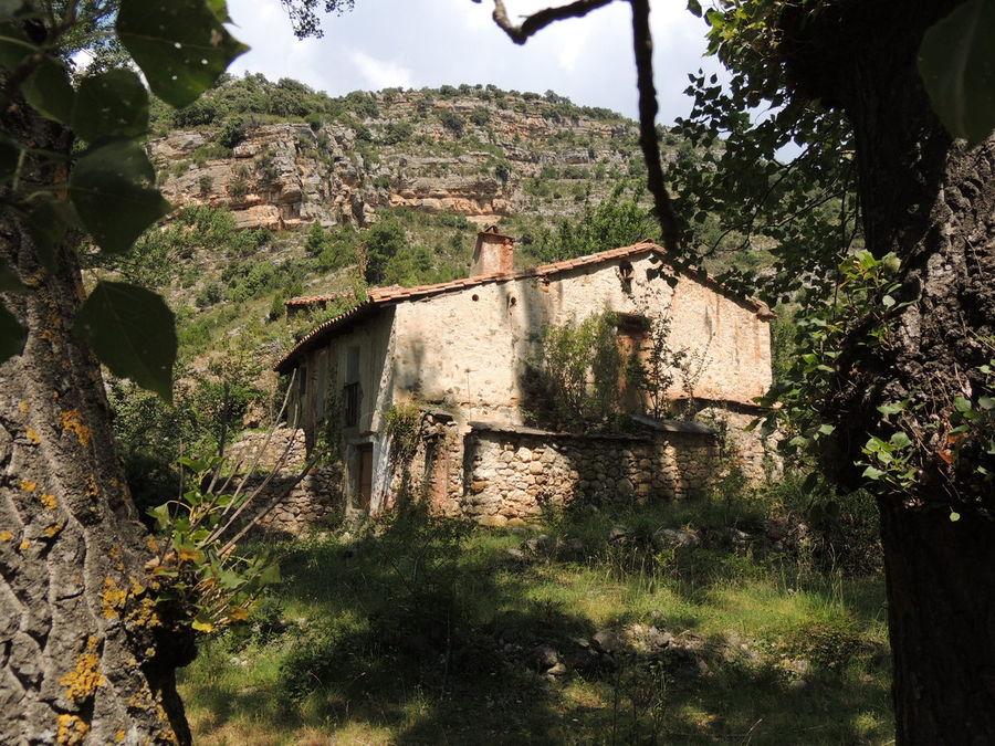 La Molineta del Vispal